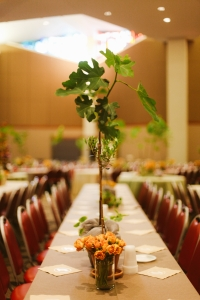 Fig trees and Olive trees as centerpieces for a Bar Mitzvah