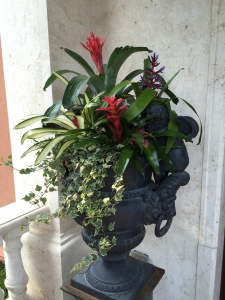 Cast Iron Urn Pottery with Bromeliad