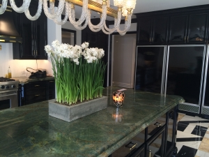 Paper Whites Home Decor Kitchen Decor