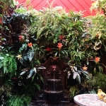 Live Green Wall Atrium with fountain