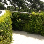 Living Organic Green Wall Rooftop Garden Installation