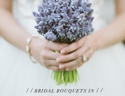 Bridal Bouquet composition 200 stems of blue mascari